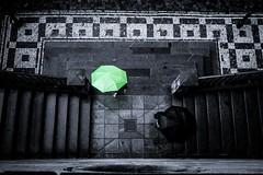 Umbrella Parade (tomabenz) Tags: humaningeometry rainyday sonya7rm2 streetphotography contrast czechrepublic europe praga praha black green stairs streetview umbrella street a7rm2