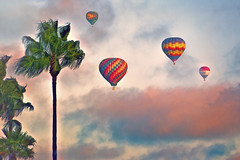 Up Up And Away... (Artypixall) Tags: california delmar hotairballoons palmtrees dusk texture faa getty