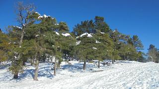 Nieve en el Pagasarri