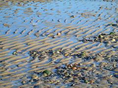 Portobello Beach (Mighty Barbs) Tags: costa beach coast scotland edinburgh playa escocia northsea portobello edimburgo