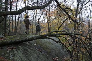 Quebec Elk & Red Stag Hunt 83