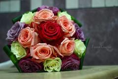 - اللهّم انت من تُقّدر علينا الأقدار ، فأرزقنا معها الرّضا والصّبر عليها ، اللهم إنّا فيها نحتسب الأجر منْك ، أنت حسبُنا ونصيرنا ونعم الوكيل . #flowers  #تصويري  #ورده  #مسكة_ورد (Fatoom.Grapher) Tags: flowers تصويري ورده مسكةورد