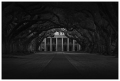 Among the Oaks (chadbrowngraphics) Tags: trees bw white house black history nikon louisiana row historic plantation votary d7100