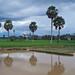 Kep - Ricefield Reflection