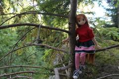 Asuna sentada en un árbol. (Ninotpetrificat) Tags: anime toys rojo doll dress handmade manga hobby bosque denim sao puppe muñeca dollclothes azone japantoys asuna japandoll azonedoll ropademuñeca ramoneras axcursión