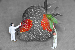 Slinkachu (Daz Bee) Tags: people strawberry little painters h0 slinkachu