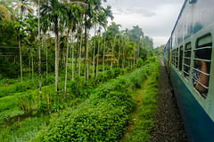 Appelley (Kerala), India (DitchTheMap) Tags: travel blue sky people india white holiday green tourism nature grass lines yellow clouds train landscape asian thailand colorful asia flickr track view outdoor background indian culture railway running kerala scene stop transportation local passenger parallel railways 2016 appelley
