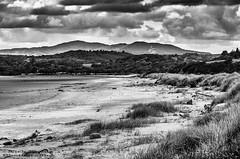 MerseheadRSPB_DSC7649 (Nick Woods Photography) Tags: trees blackandwhite bw cloud beach clouds landscape mono scotland blackwhite sand rocks cloudy hills greenery sanddune sanddunes cloudysky sandybeach dumfriesgalloway beachscape bwimage rockyshoreline