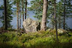 A Rock from the Beginning of Time (@Tuomo) Tags: finland summer päijänne jämsä stone rock landscape lake nikon df nikkor 60mm28