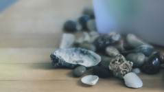 coquillages et roches (cb cline) Tags: coquillage table collection souvenirsdt bleu roche t vacances plage fromthesea