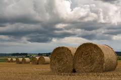 Duos (alain.winterberger) Tags: balle paille ballots bl moisson straw bale wheat nuages clouds nature paysage agriculture suisse switzerland schweiz svizerra 35mm fixe focale champ grosdevaud echallens romandie rgion pays