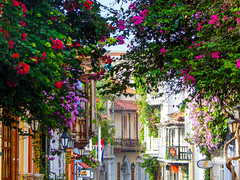 Charming streets (1jonathan1) Tags: flower old town architecture plant nature street cartagenadeindias love photography flores balcony morning sun light walk