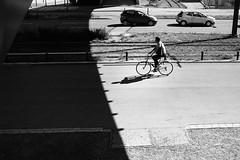 bicycle shadow (gato-gato-gato) Tags: 35mm asph ch iso200 ilford leica leicamp leicasummiluxm35mmf14 mp mechanicalperfection messsucher schweiz strasse street streetphotographer streetphotography streettogs suisse summilux svizzera switzerland wetzlar zueri zuerich zurigo zrich analog analogphotography aspherical believeinfilm black classic film filmisnotdead filmphotography flickr gatogatogato gatogatogatoch homedeveloped manual rangefinder streetphoto streetpic tobiasgaulkech white wwwgatogatogatoch zrich leicam6 m6 manualfocus manuellerfokus manualmode schwarz weiss bw blanco negro monochrom monochrome blanc noir strase onthestreets mensch person human pedestrian fussgnger fusgnger passant zurich