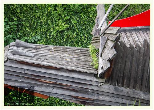 Schallaburg gaerten: gruener blick | 2014-07