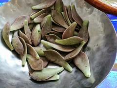 Salad (Alfred Life) Tags: summarith12227 summarit leicaduallenses plus huaweip9plus p9    asph leica huawei