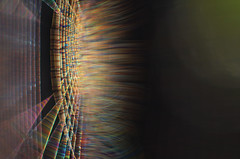 silk energy (pete ware) Tags: spiderweb macro nikond7000 afnikkor50mmf18d extensiontubesx3 earlymorninglight peteware handheld veryclose shootingwiththesunalmostdirectlytothethinsideelevationoftheweb