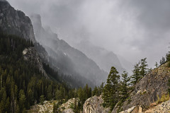 Thunderstorm Coming Down Cascade Canyon (T.M.Peto) Tags: mountain outdoor outdoors landscape mountainside canyon cascadecanyon clouds thunderstorm weather wx rocks crag trees darkskies storm cliff hiking travel nationalpark wyoming grandtetonnationalpark getoutdoors getoutside
