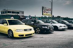 Audi Lovers meeting (Luky Rych) Tags: audi lovers audifan audiklub slovakia audislovakia a4 a5 a6 a7 a8 q3 q5 q7 german scene car automotive meeting audiholics justaudi