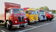 Early Line up of Fodens Whiwood Truck Stop Frank Hilton IMG_9186 (Frank Hilton.) Tags: erf foden atkinson ford albion leyland bedford classic truck lorry bus car