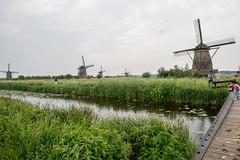 Kinderdijk093 (Josh Pao) Tags: kinderdijk    rotterdam  nederland netherlands  europe