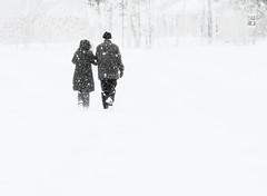 Environné de blanc.. (Amiela40) Tags: snowflake winter white couple walk hiver together promenade ensemble blanc marche floconsdeneige