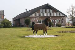 Statue of a horse  /  Paardenstandbeeld (Renk Knol) Tags: horse beeld paard status