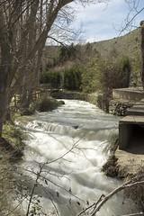 Río Queiles (Voz mediano) (jm.guarinos) Tags: viajes vozmediano lugaresconencanto aragn ríos españ̃a