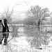 Flood Plain, Severn Valley, Gloucestershire