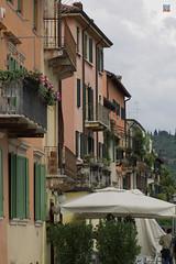 Via Sottoriva Verona (philippe.romeo01) Tags: madonna verona verone viasottoriva divinechild romantimes esterina themostcharacteristicstreets montesilice