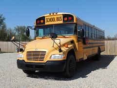 Randolph Southern School Corporation (Nedlit983) Tags: blue school bus bird vision