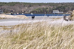 Wingaersheek Beach: Grass (AntyDiluvian) Tags: beach grass boston river massachusetts boulders northshore gloucester wingaersheek annisquam capeann
