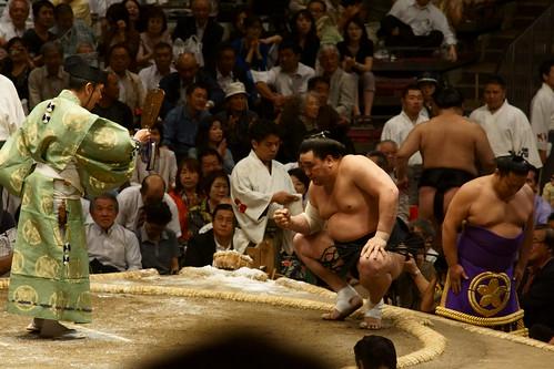 日馬富士 画像27