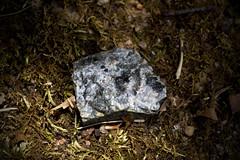 IMG_0001 Seeking Buddha (oldimageshoppe) Tags: summer rock driveway mineral gneiss