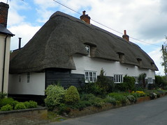 GOC The Pelhams 101: Thatch End, Furneux Pelham (Peter O'Connor aka anemoneprojectors) Tags: england house building architecture kodak outdoor cottage hertfordshire listed listedbuilding thatchedcottage 2016 gradetwo goc gradeiilisted grade2listedbuilding grade2listed gradeiilistedbuilding gradetwolisted furneuxpelham gayoutdoorclub gradetwolistedbuilding z981 kodakeasysharez981 gochertfordshire hertfordshiregoc thatchend gocthepelhams