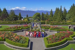Rose Garden (yuanxizhou) Tags: mountain oceanview scenery college city lifestyle universityofbritishcolumbia vancouver weekend sky summertime girlfriend friendship rosegarden field garden rose flower