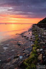 Sonnenuntergang, Insel Poel (SaschaHaaseFotografie) Tags: sonnenuntergang inselpoelostsee sunset landscape landschaft sascha haase tbiggums deutschland germany