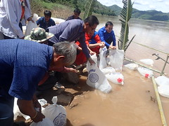 Releasing bags of fish into a Fish Conservation Zone