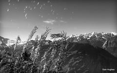 Autumn Riding around Verbier  (95) (Carl and Sian) Tags: orange alps switzerland mtb mountainbiking verbier singletrack orangefive bikeverbier alpinesingletrack carlandsian