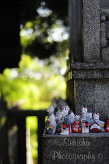 Fushimi Inari-taisha temple (Senisha's Photo) Tags: fushimiinaritaishatemple torii kitsune inari kyoto japan sollevante volpi giappone2015 noi
