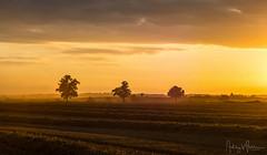 Harvest Sunset (Ashley Wallace - Touchdown Aviation) Tags: trees fields straw photography orwell cambridgeshire dust wheat golden orange august summer sunset harvest