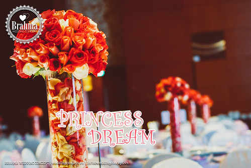 Braham-Wedding-Concept-Portfolio-Princess-Dream-1920x1280-21