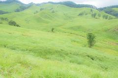13Tonomine Highland (anglo10) Tags:   japan field