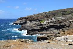 20-May 22 2016-Oahu HI-Makapu'u Summit-en route (Barb Mayer) Tags: coastline ocean pacificocean makapuu hawaii oahu