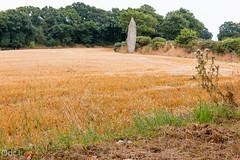Le menhir de la Roche Longue - Explored (Oric1) Tags: roche longue 70dcanon france franceoric1 oric1 quintin sigma1835mmf18art breizh bretagne brittany ctesdarmor landscape menhir mgalithe paysage rochelongue mgalithisme nolithique