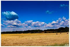 OntheroadtoSaintMearddegurcon - Gironde (33) (J oSebArt's Pictures) Tags: campagne campain paysage nuages ciel t bl moisson landscape clouds cielo sky skyporn cloudporn summer fields champs wheat dordogne saintmearddegurcon adobe photoshop ligthroom canon 7dmarkii leefilter leefilters ef2470 aquitaine 2016