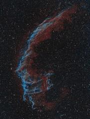 The Eastern Veil Nebula (Astro Gabe) Tags: easternveil veilnebula narrowband emissionnebula stars space tmb130 mach1 qsi supernovaremnant supernova ngc6992 ngc6995 astrometrydotnet:id=nova1659015 astrometrydotnet:status=solved