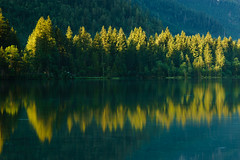 Reflexionen (Philipp Zieger - www.philippzieger-photographie.de) Tags: morgenstimmung berchtesgadenerland hintersee zelten bayern sonnenaufgang bume trees nadelbaum see lake alps mountains berge urlaub holiday natur nature morning licht morgen light spiegelung reflexions wasser water grn green baumwipfel bavaria deutschland germany wald forest