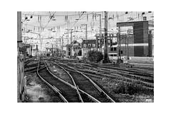 Rail (Onascht) Tags: bahnhof cologne dom gleise kln nrw nikond610 sommer tokina100mmf28atxprodlens unterfhrung black brcke rrail station white