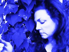 bleu (MacroMarcie) Tags: cruelworld blue bleu selfie selfportrait postprocessing hss slidersunday me macromarcie iphone topaz photoshop iphone7plus