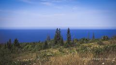 Lake Superior View from Brockway (1 of 1) (amndcook) Tags: keweenaw landscape outdoors water brockwaymountain copperharbor greatlakes lakesuperior nature pine tree upperpeninsula wildlife